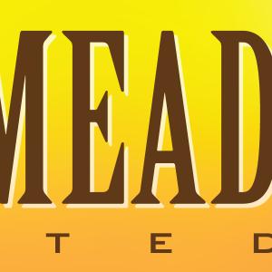 Freemeadsons logo icon